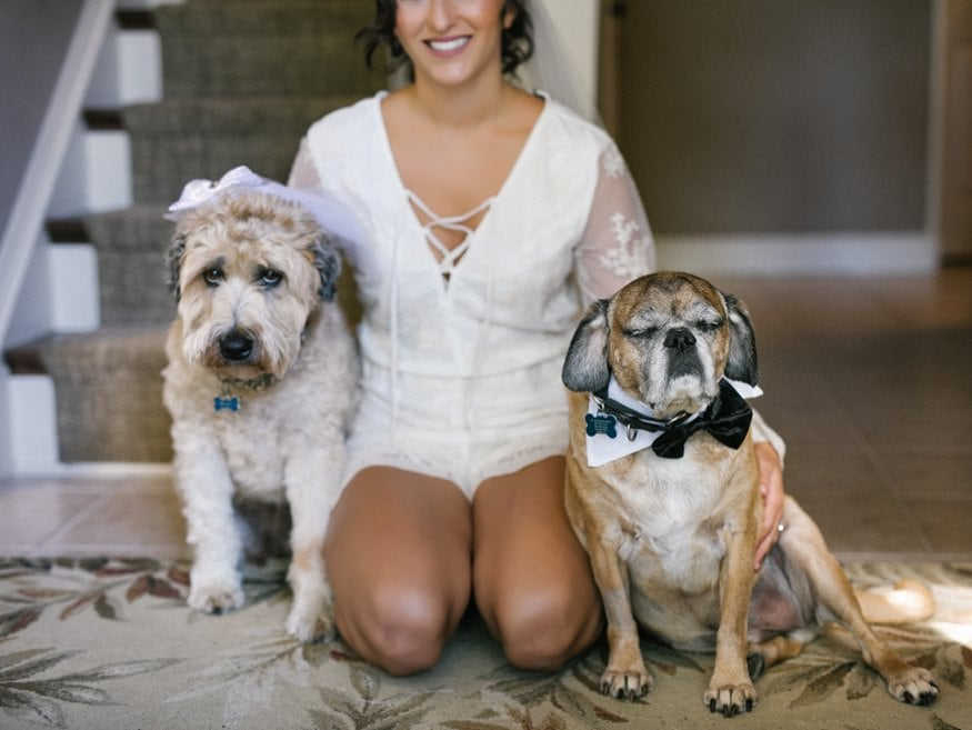 Bride with her dogs before Knowlton Mansion wedding.