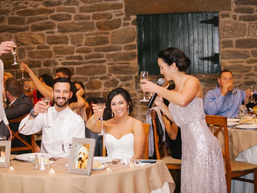 Toasts at fall wedding at Knowlton Mansion.