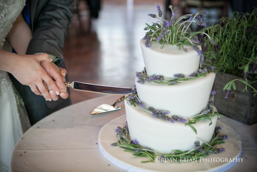 Bride and groom cake cutting at Rat's Grounds for Sculpture wedding