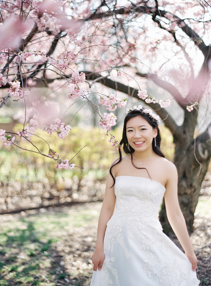 Bride's portraits by the Cherry Blossoms at Brooklyn Botanic Garden wedding.